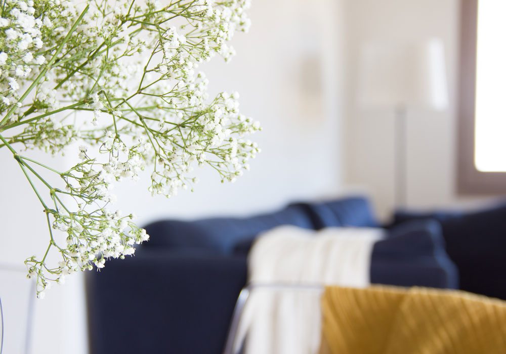 Home and Emotion - Home Staging - Girona Pericot
